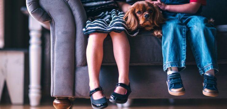 pies-dzieci
